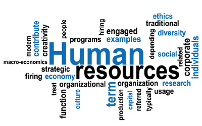 hr management the foundation to a successful organization